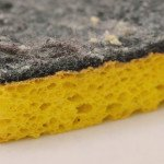 How to REALLY disinfect a sponge